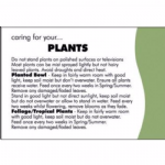 CARING FOR YOUR PLANTS